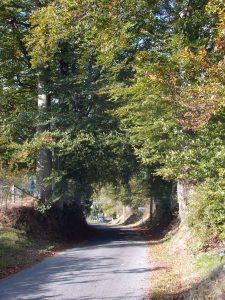 Wanderung von Crombach nach Weisten und Braunlauf