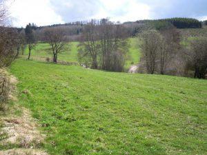 Wanderung von Valender nach Huntheim und in den Ommerscheider Wald