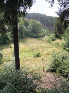 Wanderung von Holzheim ins Frankenbachtal und nach Lanzerath