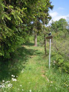 Wanderung von Merlscheid durchs Manderfelder und Losheimer Land - AUSGEBUCHT